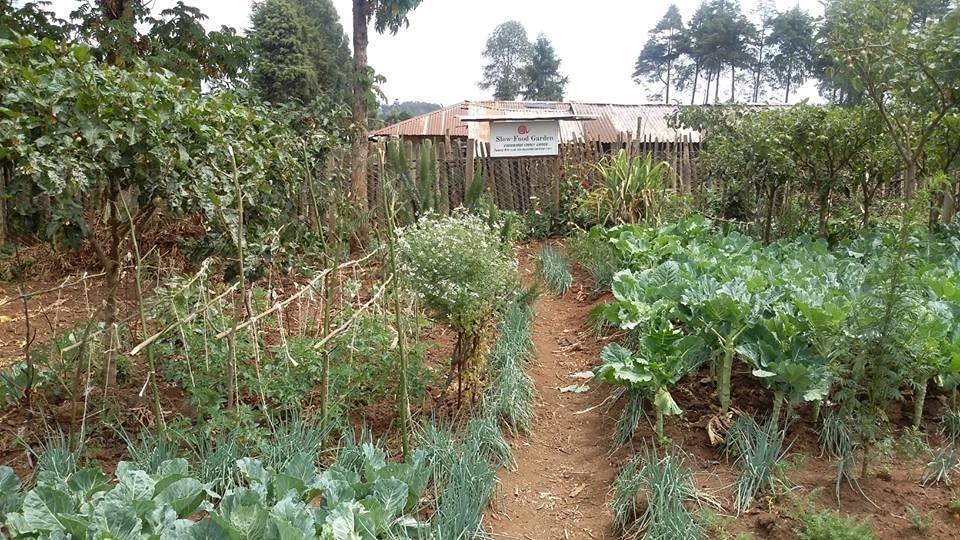 Nakuru County © Simon Ngatia, Facebook