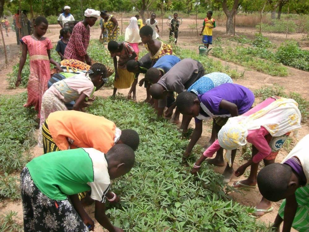Bagraogo Schulgarten in Burkina Faso © Jean-Marie Koalga
